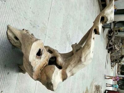鐵梨木脫骨料天然造型家居木藝花架