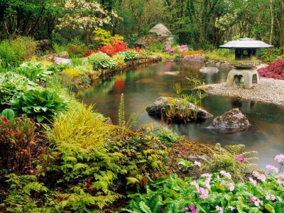 別墅庭院為什么要設置水池