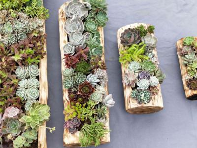 風化木花槽