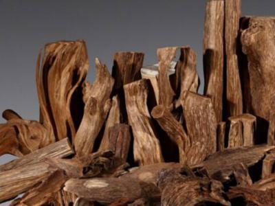 奇楠沉香被称为香料中的钻石