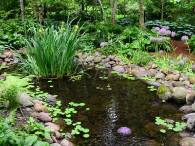 別墅庭院設計中水池的風水知識