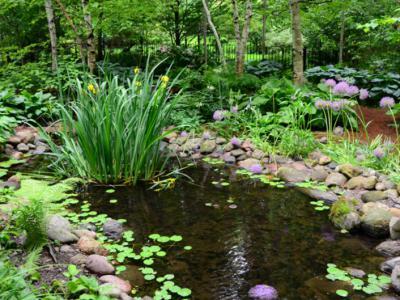別墅庭院水景的設計方案三大因素