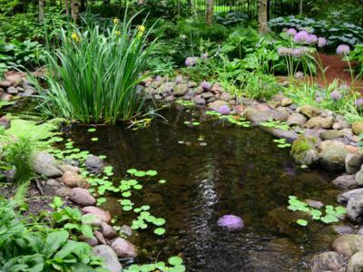 別墅庭院設計中蓄水池難題怎么解決