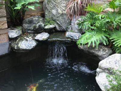 庭院魚池設計方案幾十年工作經驗總結