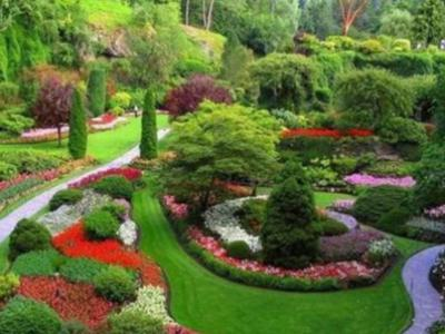 園林綠化施工流程有哪些