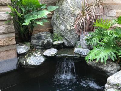 庭院景觀設計的六個技巧