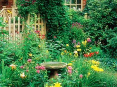 別墅庭院花園施工布置技巧