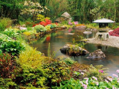 別墅庭院魚池設計整體方案
