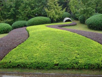 園林景觀設計的文化與重要性