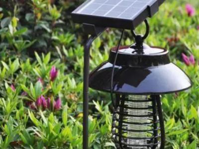 別墅庭院夏季如何驅蚊防蟲